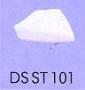DSST101