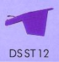 DSST12